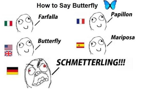 funny-pictures-german-language-meme-0