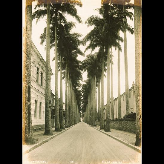 rua Paissandú, no Flamengo