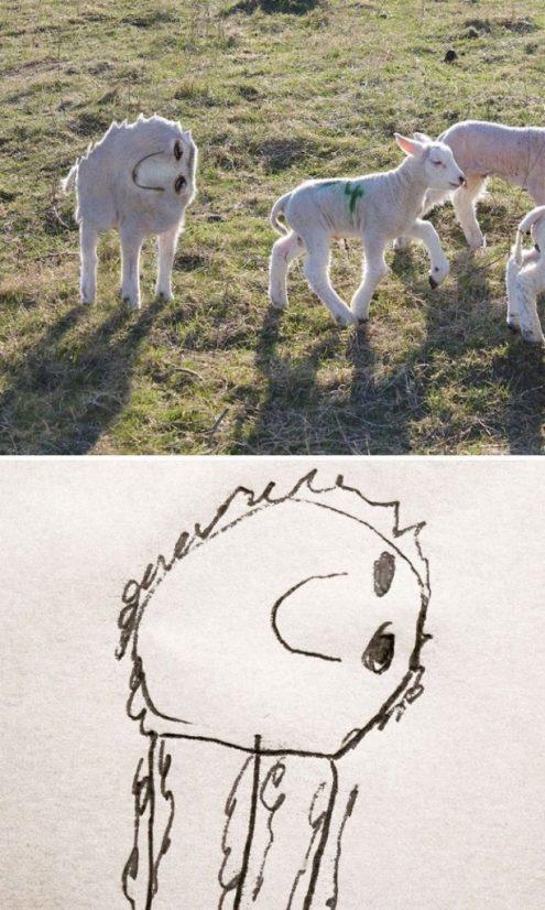 Concordo que QUASE todas as ovelhas são fofinhas...