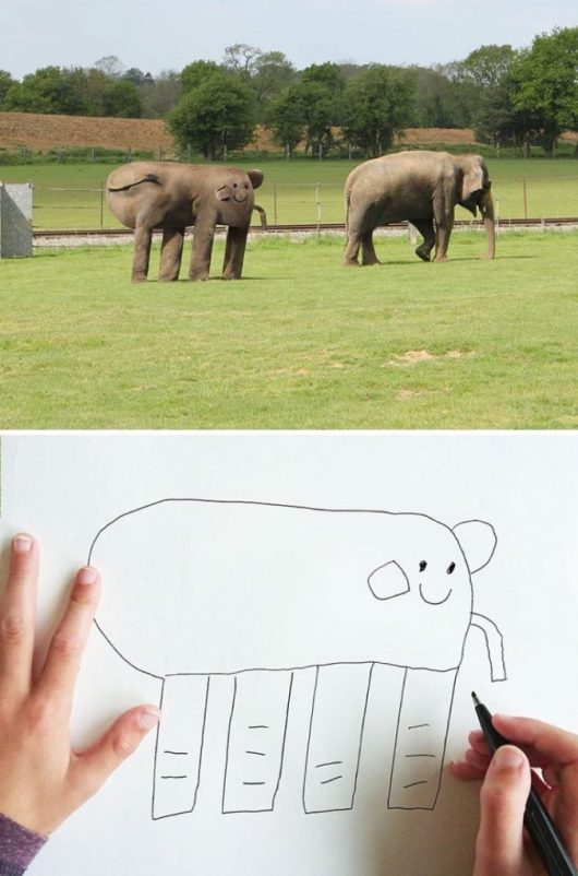Muito legal esse elefante!